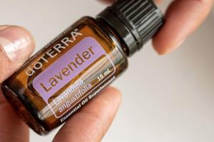 Lavendel – Öl der Kommunikation